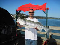 Scooter and striped bass