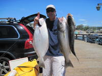 Ken and halibut and stripers