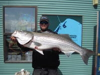 Tim and huge striped bass