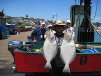 Tyrus and halibut