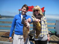 Candy and Chelsea and two grass cod