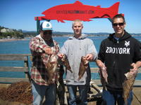 Bill Bryer Robert and brown rock cod