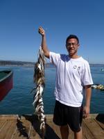 Andrew and kingfish