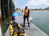 Capitola: Ken with Striper and Leopard Shark