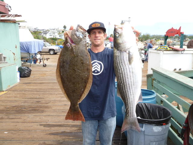 Capitola: Toby and Striper and Halibut