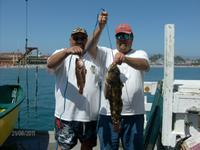 Santa Cruz: Nice fish guys.