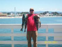 Santa Cruz: Trevor Smith of Fremont and his friends caught these Lingcod and a bunch of rockcod too.