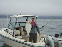 Capitola: Mark and Halibut