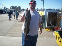 Santa Cruz: 30 inch ling