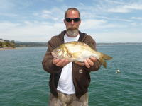 Capitola kiven mile reef rubber lip perch capitola for Santa cruz fishing report