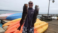 Capitola: Bob with 2 Lings
