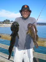 Alex and ling and grass cod