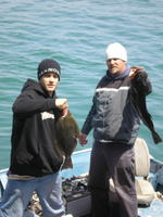 Rubin And His Buddy Display A Halibut and Lingcod