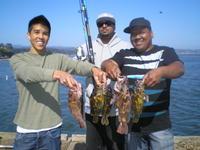 Chris Jon Ray rock fish