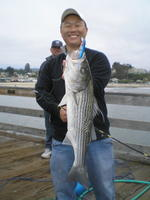Jei and striped bass