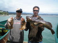 Mike John browns and lingcod