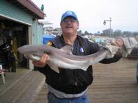 Richard and sand shark