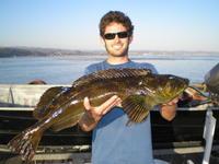 little swim bait big fish