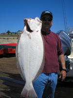 Larry and Halibut